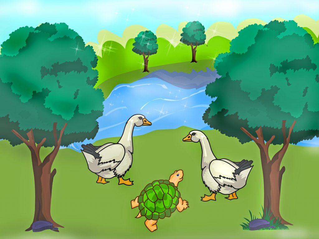 Chuyện kể thứ 9- Ngỗng và rùa