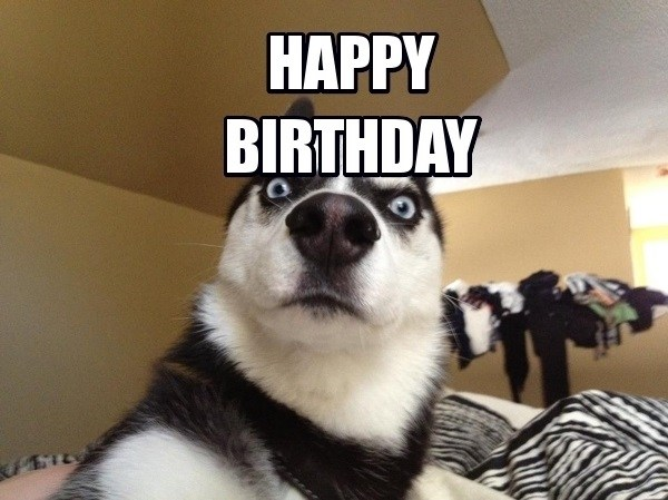 Hình ảnh độc chúc mừng sinh nhật