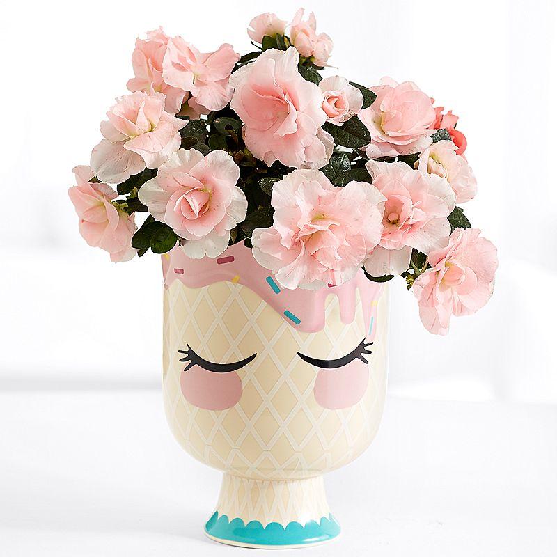 Hoa mừng sinh nhật đẹp nhất