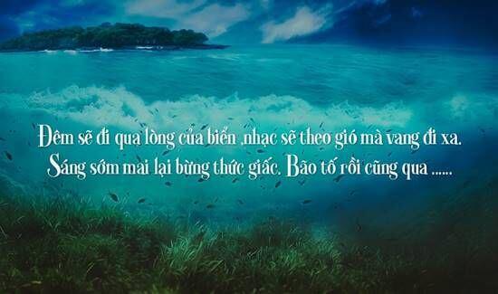 Những câu stt ngắn về biển