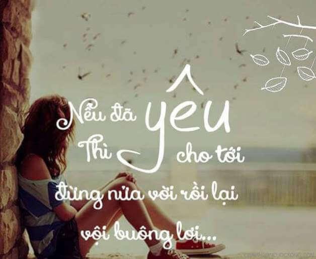Những câu nói hay về tình yêu hay nhất