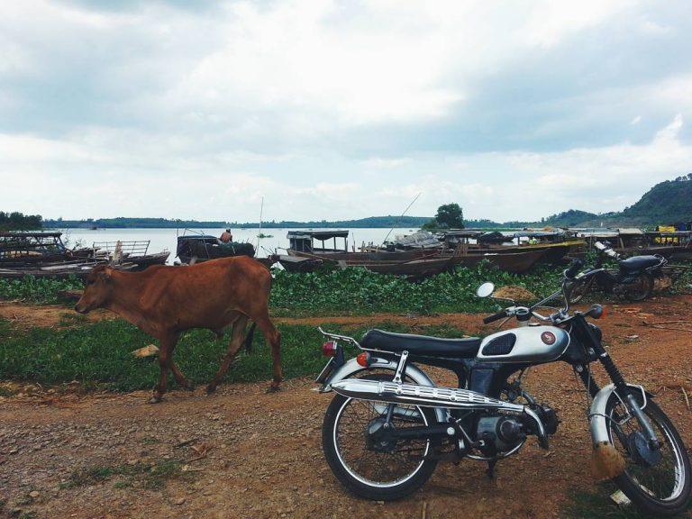 Vị trí cắm trại Hồ Trị An