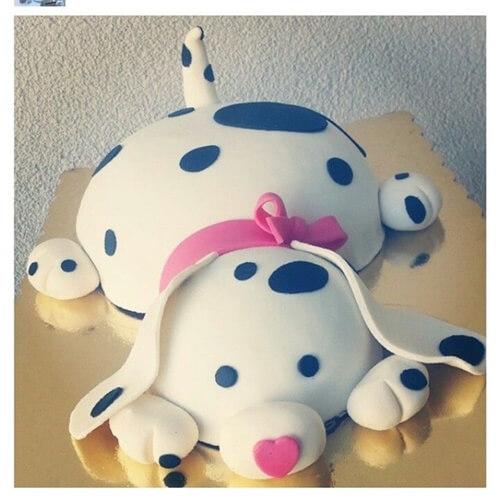 Bánh sinh nhật chó đốm