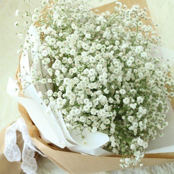 Download ảnh hoa sinh nhật trắng sáng