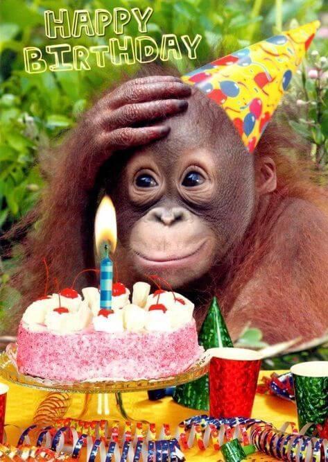 Hình ảnh sinh nhật vui vẻ dành tặng bạn bè
