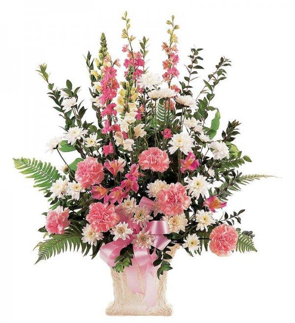 Hoa mừng sn màu hồng tặng cho phụ nữ