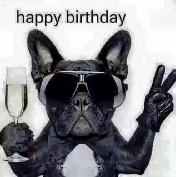 Hình ảnh chúc mừng sinh nhật bá đạo vui nhộn