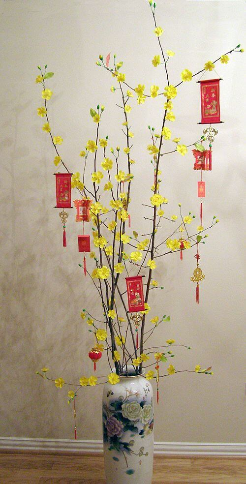 Trang trí ngày tết với cây mai ngày đầu xuân
