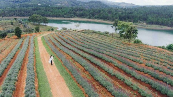 Địa điểm chụp hình cưới ngoại cảnh Đà Lạt - Hồ Tuyền Lâm