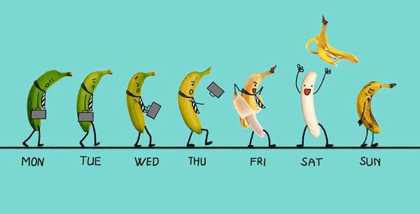 Những hình ảnh vui nhộn hài hước nhất thế giới về ngày trong tuần