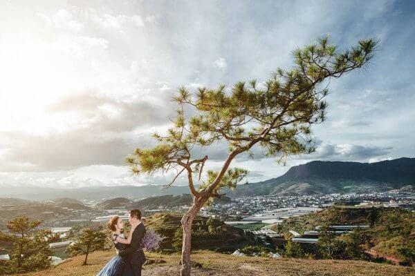 Chụp ảnh cưới ngoại cảnh đẹp cạnh cây thông cô đơn trên đồi Thiên Phúc Đức