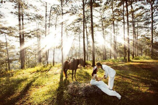 Chụp hình cưới ngoại cảnh đẹp tại đồi thông - Đà Lạt