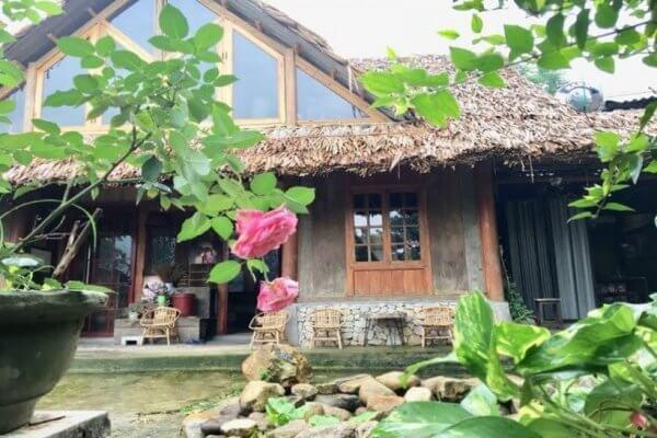 Homestay Sapa view đẹp - Opal House đẹp như mơ giữa cánh rừng già