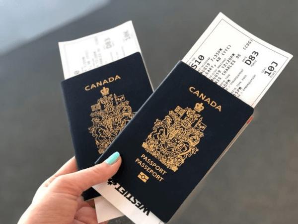 Trách nhiệm của visa Liên Lục Bảo