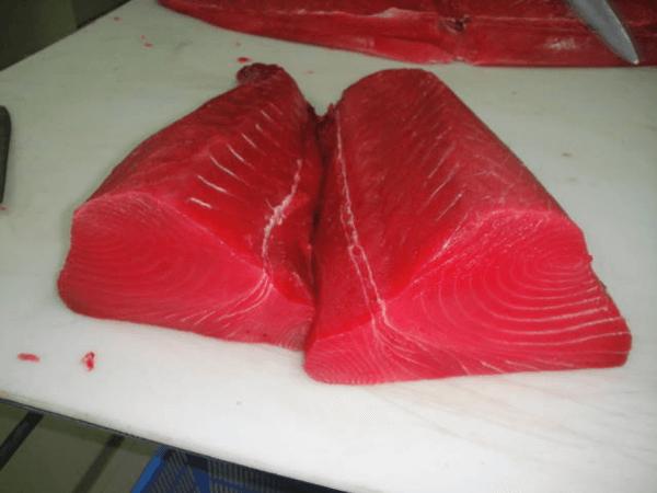 Cách bảo quản cá ngừ đại dương trong quá trình sử dụng