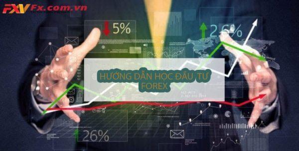 Hướng dẫn học đầu tư forex