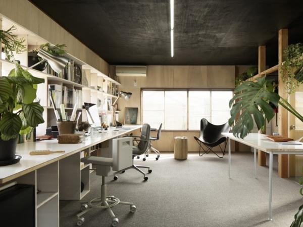 Văn phòng làm việc với những cây cảnh đơn giản
