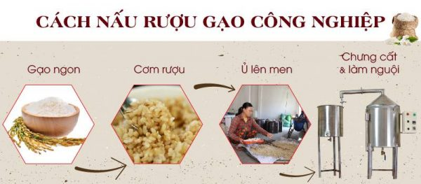 Các quy trình nấu rượu gạo truyền thống hiện nay