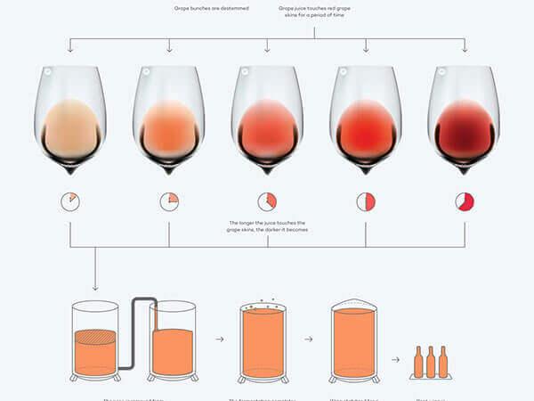 Quy trình sản xuất Rượu vang hồng